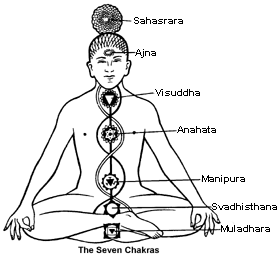 The seven chakras.
